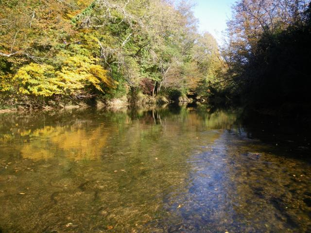 valouse automne